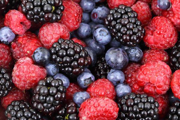 Frystorkade frukter